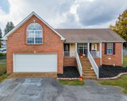 701 Red Hollow Dr, Springfield image