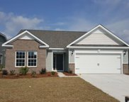1217 Palm Crossing Dr., Little River image