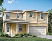 2984 Ambersweet Place Unit Lot 579, Clermont image