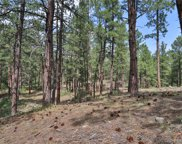 1542 Meadow Trail, Franktown image