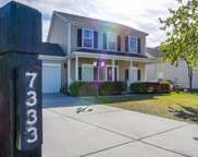 7333 Brown Thrasher Court, Hanahan image