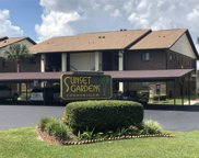 553 Belltower Avenue Unit 553, Deltona image