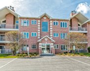 11515 Settlers Pond Way Unit 1A, Orland Park image