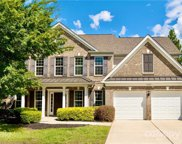 17527 Campbell Hall  Court, Charlotte image