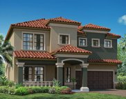 11872 Frost Aster Drive, Riverview image