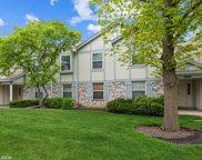 201 Blossom Court Unit #201, Buffalo Grove image