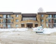 5550 Astor Lane Unit #123, Rolling Meadows image
