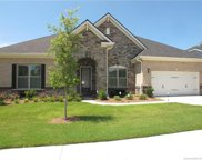 1297  Arges River Drive, Fort Mill image