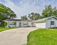 4425 Snapper Street, Tampa image