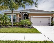 11848 Frost Aster Drive, Riverview image