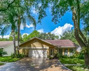 12115 Steppingstone Boulevard, Tampa image