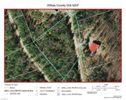 Lt 142 Staghorn Road, Purlear image