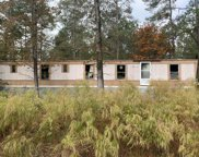 4378 Whitestocking Road, Burgaw image