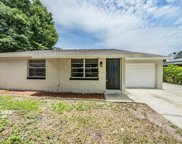 8510 Seven Coves Court, Tampa image
