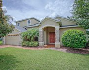 12114 Still Meadow Drive, Clermont image