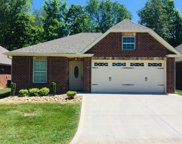 9209 Dragonfly Way, Strawberry Plains image