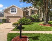 2667 Tall Maple Loop, Ocoee image