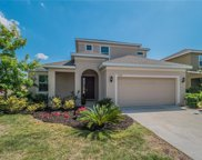 3326 Bethpage Loop, Mount Dora image