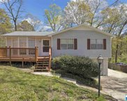 6513 Chrissy Dr, Pinson image