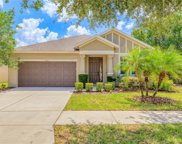 2918 Winglewood Circle, Lutz image