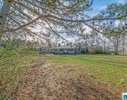 1225 Sanie Rd, Odenville image