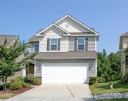 1250 Hideaway Gulch  Drive, Fort Mill image