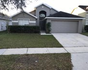 11419 Rouse Run Circle, Orlando image