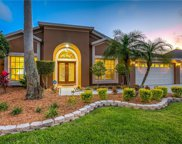 11928 Middlebury Drive, Tampa image