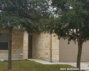 405 Saddlehorn Way, Cibolo image