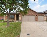 4009 Hanna Rose Lane, Fort Worth image