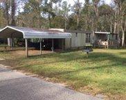 767 Bryant Landing Rd, Wewahitchka image