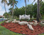 103 Sea Oats Drive Unit #F, Juno Beach image