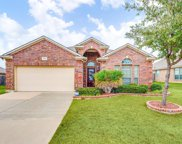 1407 Axis Deer Road, Arlington image