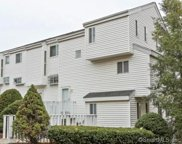 6 Golden Hill  Road Unit 9, Danbury image