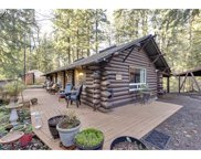 66480 E MOUNTAIN AIR  DR, Welches image