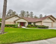 3330 Westmoreland Drive, Tampa image