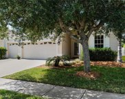 31130 Alchester Drive, Wesley Chapel image