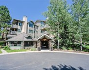 31719 Rocky Village Drive Unit 215, Evergreen image