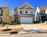 1254  Hideaway Gulch Drive, Fort Mill image