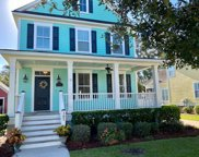 305 Back Pond Court, Charleston image