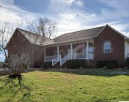 1331 Hodges Bend Rd, Sevierville image