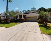 20022 Heritage Point Drive, Tampa image