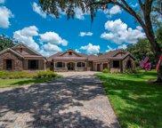 13532 Bay Lake Lane, Tampa image