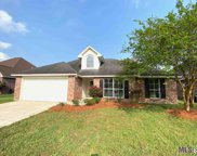 23952 Terrace Ave, Denham Springs image