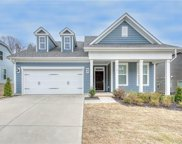 14101 Goldenrod Trace  Road, Charlotte image