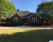 22508 Indian Trace Drive, Athens image