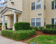 18137 Sterling Gate Circle Unit 18137, Tampa image