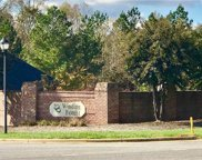 156 Crooked Branch  Way, Troutman image