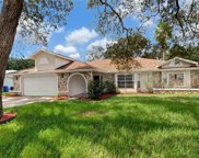 1365 Haulover Avenue, Spring Hill image