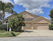 10451 Meadow Spring Drive, Tampa image